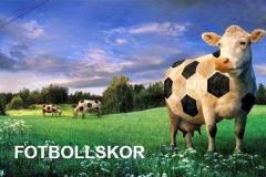 ordvits-fotbollskor