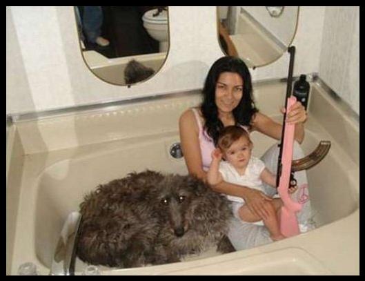 Familjen badar