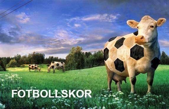 Fotbollskor